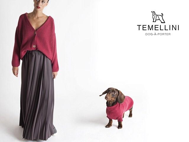 La boutique che veste i cani insieme ai loro padroni